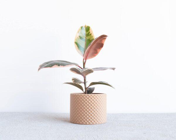 piko indoor wood planter