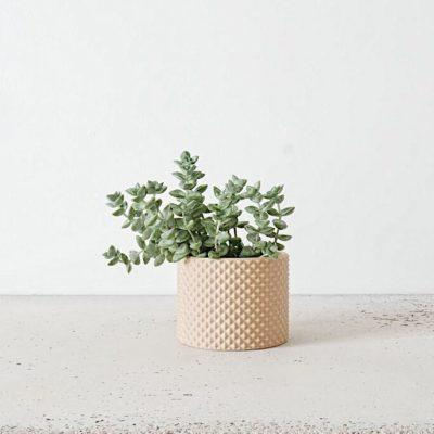 Indoor Planter PIKO