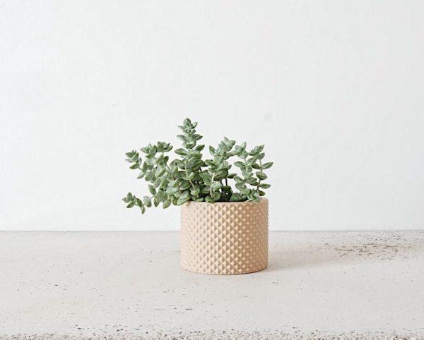 PIKO Indoor Planter