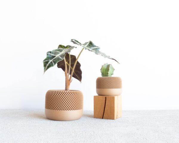 apple wood indoor planter