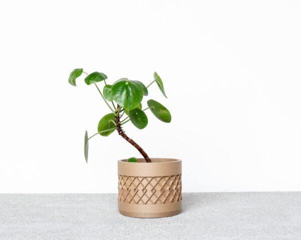 AZTEK Indoor Planter