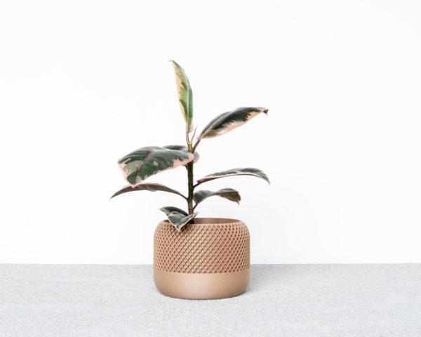 APPLE Indoor Planter