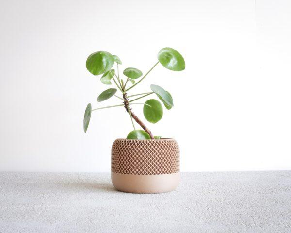 Apple Planter natural wood