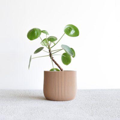 Pot Lotus natural wood