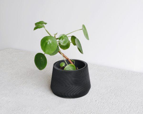 Black Savane planter