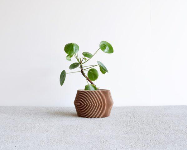 Dissipat pot natural wood