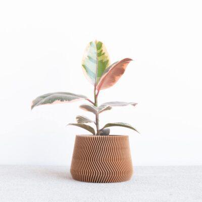 savanne wood indoor planter