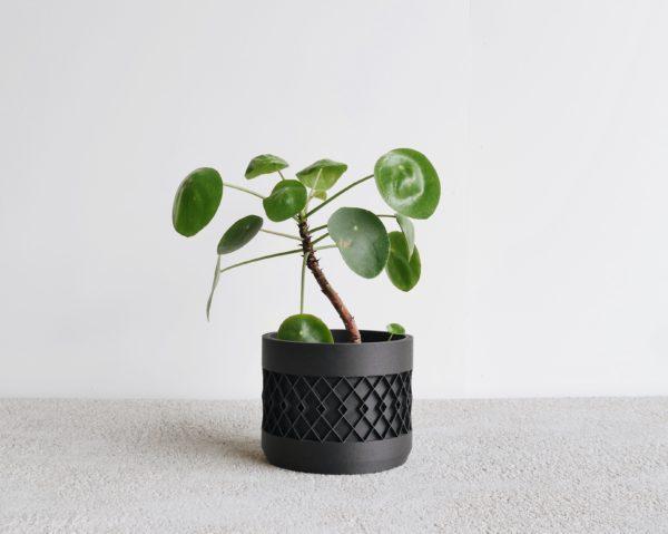 Black Aztek indoor planter