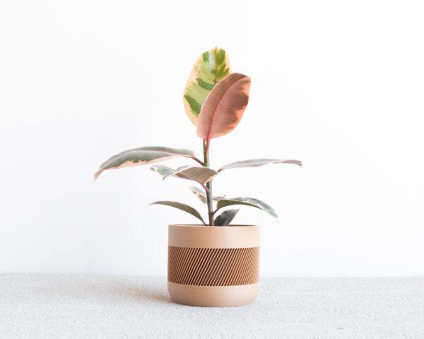THERMA Indoor Planter