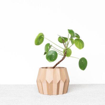 tokyo indoor planter