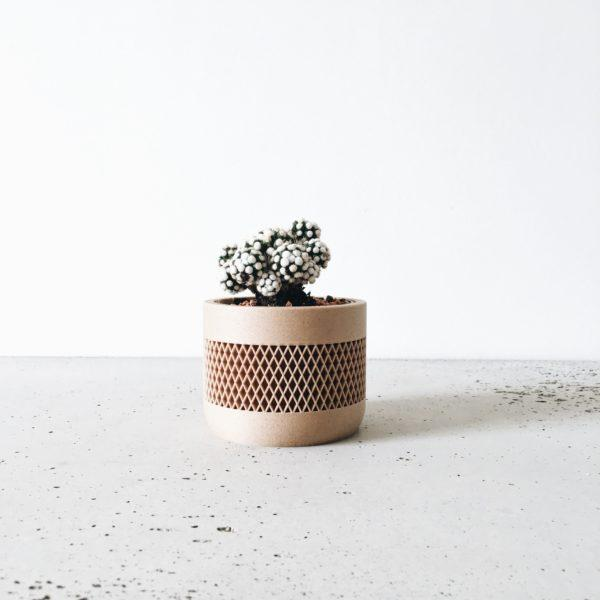 math planter