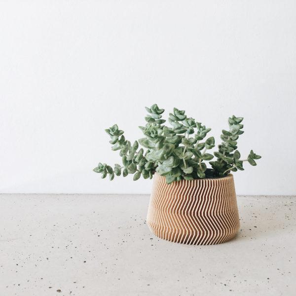 SAVANNE Indoor Planter