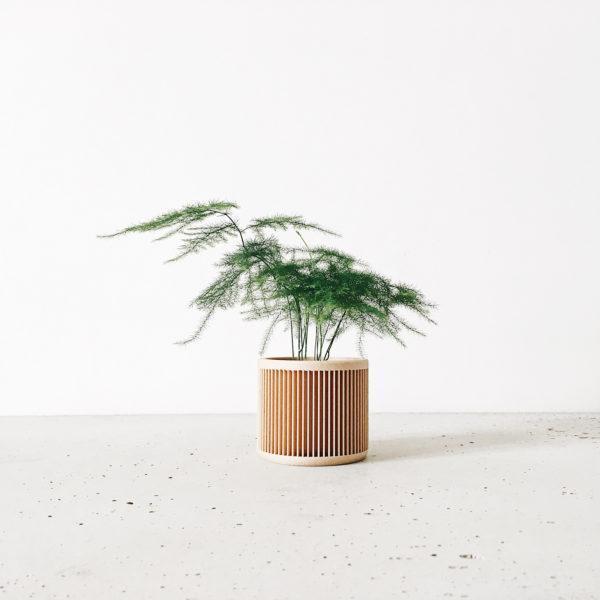 JAPAN Indoor Planter