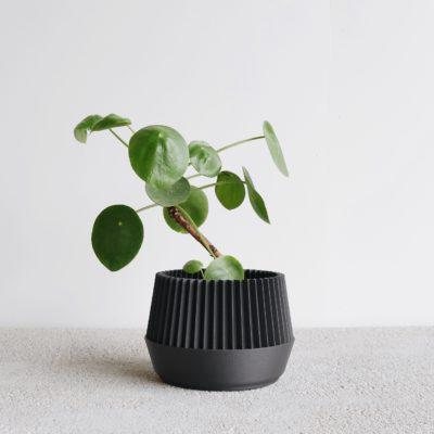 Black Kobe indoor planter