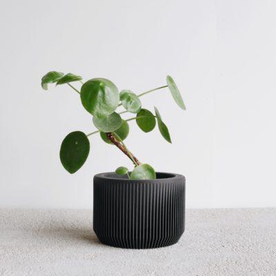 Black Praha indoor planter